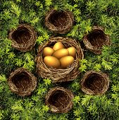 picture of bird-nest  - Group savings and retirement plan concept as a group of small bird nests connected to a large nest with gold eggs as a financial symbol for community and team investment strategy pooling funds for higher yields - JPG