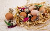 stock photo of manger  - Speckled quail eggs and chicken eggs in the manger on a wooden background - JPG