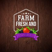 foto of blackberries  - Farm Fresh and Grown Locally vector illustration on a rustic wood background with a hexagonal frame and banner decorated with a strawberry and blackberry - JPG