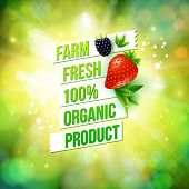 image of 100 percent  - Guaranteed 100 percent Farm Fresh Organic Product poster or card design over a blurred green summer background with sun burst decorated with a ripe strawberry and blackberry - JPG
