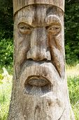 picture of carving  - Ancient Druid face carved in a tree trunk on a background of nature - JPG