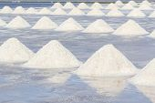 stock photo of salt mine  - Farmers are harvesting salt in the salt fields south of Thailand - JPG