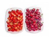 stock photo of cherries  - Two varieties of cherries  - JPG