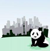pic of panda bear  - Beijing skyline - JPG