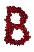 pic of alphabet letters  - Red rose petals forming every letter of the alphabet  - JPG