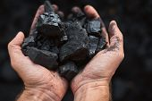 Poor Middle-aged Man Holding The Hands Of Stone Coal For Sale poster
