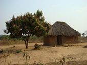 stock photo of mud-hut  - Small hut located in the village of Kafulafuta Zambia Africa - JPG