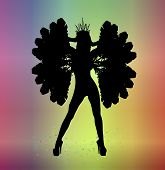 picture of mardi-gras  - silhouette of woman in carnival costume on colorful background - JPG