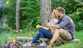 Couple Relaxing Sit On Log Having Snacks. Family Enjoy Romantic Weekend In Nature. Pleasant Picnic O poster