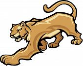 picture of cougar  - Graphic Mascot Vector Image of a Walking Cougar Body - JPG