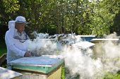Experienced senior apiarist in his apiary setting a fire in a bee smoker