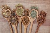 Herb selection for alternative health remedies in olive wood spoons over papyrus background. White w