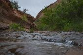 picture of negro  - Creek along the Negro Bill Canyon trail leading towards morning glory bridge - JPG