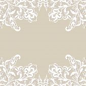 pic of lace  - White flower frame - JPG