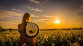 pic of rape-field  - Sundown and idyllic landscape of yellow rape field - JPG