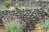picture of stone house  - Ruins of an old lava stone house and typical vegetation of Mount Etna - JPG