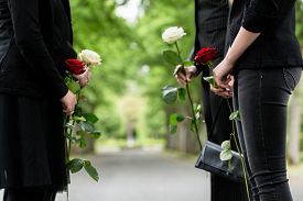 stock photo of funeral  - Family in guard of honor at funeral - JPG