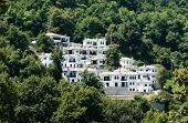 Постер, плакат: Урегулирование новых домов белых в лесу Пелион Греция