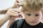 Hair Salon That Specializes In Toddlers. Little Boy With Blond Hair At Hairdresser. Small Child In H poster