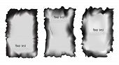 Set Of Scorched Papers On A Transparent Background, Isolated Vector Illustration poster