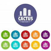 Botany Cactus Icons Color Set Vector For Any Web Design On White Background poster