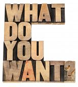 what do you want question - isolated text in vintage letterpress wood type