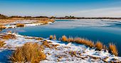 Snow Covered Marsh At Assateague Island National Seashore, Maryland.