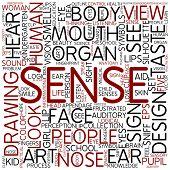 picture of sensory perception  - Word cloud  - JPG