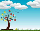 stock photo of apple tree  - autumn apple tree with fruits and leaves - JPG