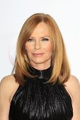 LOS ANGELES - JAN 8:  Marg Helgenberger at the People's Choice Awards 2014 Arrivals at Nokia Theater