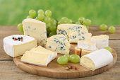 picture of brie cheese  - Cheese plate with Camembert soft cheese and Brie on a wooden board
