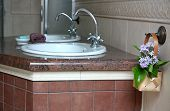 pic of washtub  - Double sinks in a marble countertop in the bathroom