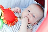 foto of finger-licking  - baby with fingers in mouth laying in stroller - JPG
