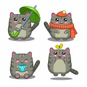 picture of kawaii  - Cute fat gray cat in different activity - JPG
