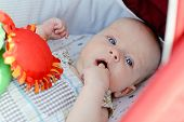 pic of finger-licking  - baby with fingers in mouth laying in stroller - JPG