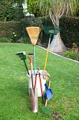 picture of pooper  - Yard working and gardening tools on green grass and a well groomed yard - JPG
