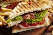 picture of tomato sandwich  - ham and bacon club sandwich on a white background - JPG