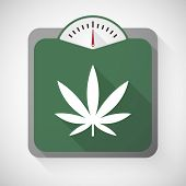 picture of marijuana leaf  - Illustration of a weight scale with a marijuana leaf - JPG