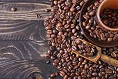 image of coffee coffee plant  - coffee beans on the wooden table roast coffee beans - JPG