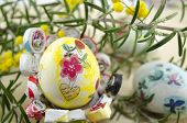 image of decoupage  - Hand painted decoupage Easter egg on decorated with green plant  - JPG