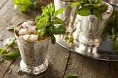 stock photo of mint-green  - Refreshing Cold Mint Julep for the Derby