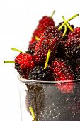 stock photo of mulberry  - fresh organic mulberry in glasses on white background - JPG
