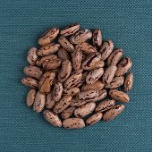 image of pinto bean  - Top view of circle of pinto beans against blue vinyl background - JPG