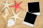 pic of shell-fishes  - Photo frame and Shells and star fish on sace background - JPG