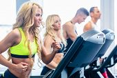 picture of treadmill  - Treadmill group - JPG