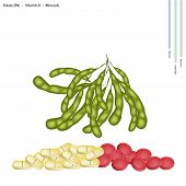 foto of soybeans  - Healthcare Concept Illustration of Green Soybean or Edamame Pods with Folate B9 Vitamin K Manganese and Minerals Tablet Essential Nutrient for Life - JPG