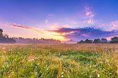 Calm And Tranquil Place With Untouched Wild Meadow At Sunrise poster