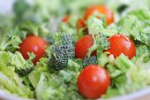 picture of healthy food  - Fresh broccoli and tomato salad - JPG