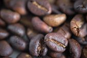 Coffee Beans Background Texture With Copy Space For Text. Royalty High-quality Free Stock Macro Phot poster