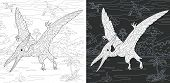 Coloring Page. Coloring Book. Dinosaur Collection. Colouring Picture With Pterodactyl Drawn In Zenta poster